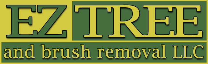 EZ Tree and Brush Removal LLC
